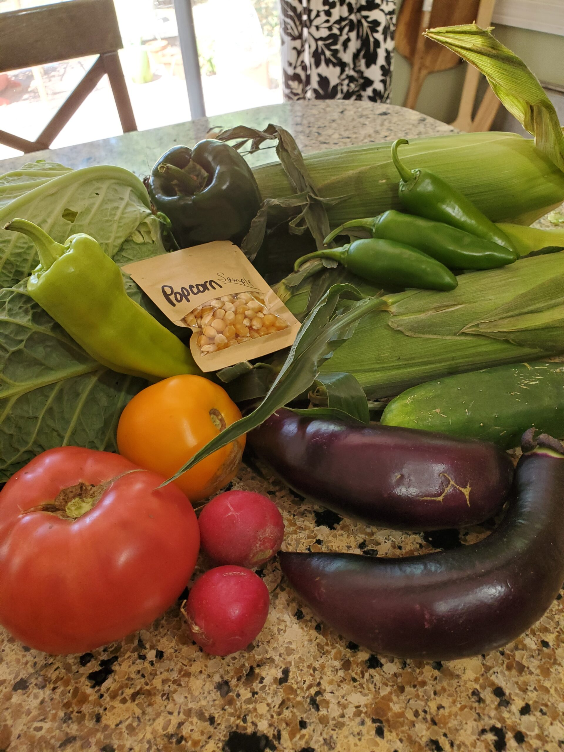 Tomatoes, eggplant, corn and other vegetables